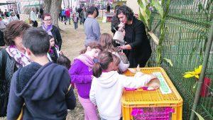Les enfants ont découvert les animaux de la ferme !