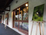 exposition salon art et matière prunay-sur-essonne