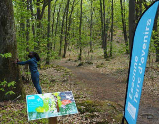 parcours sportif forêt des grands avaux champcueil département