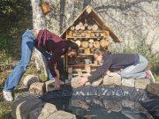 cagnotte jardin permaculture A l'ère libre Etampes