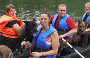 chamarande barque chiens