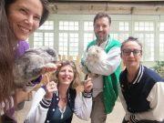 bules médiation animale lapin cochon d'inde Boissy-sous-Saint-Yon